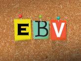 Escuela bíblica de verano (EBV)
