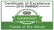 "FOW Awarded ""Excellence"" by TripAdvisor"