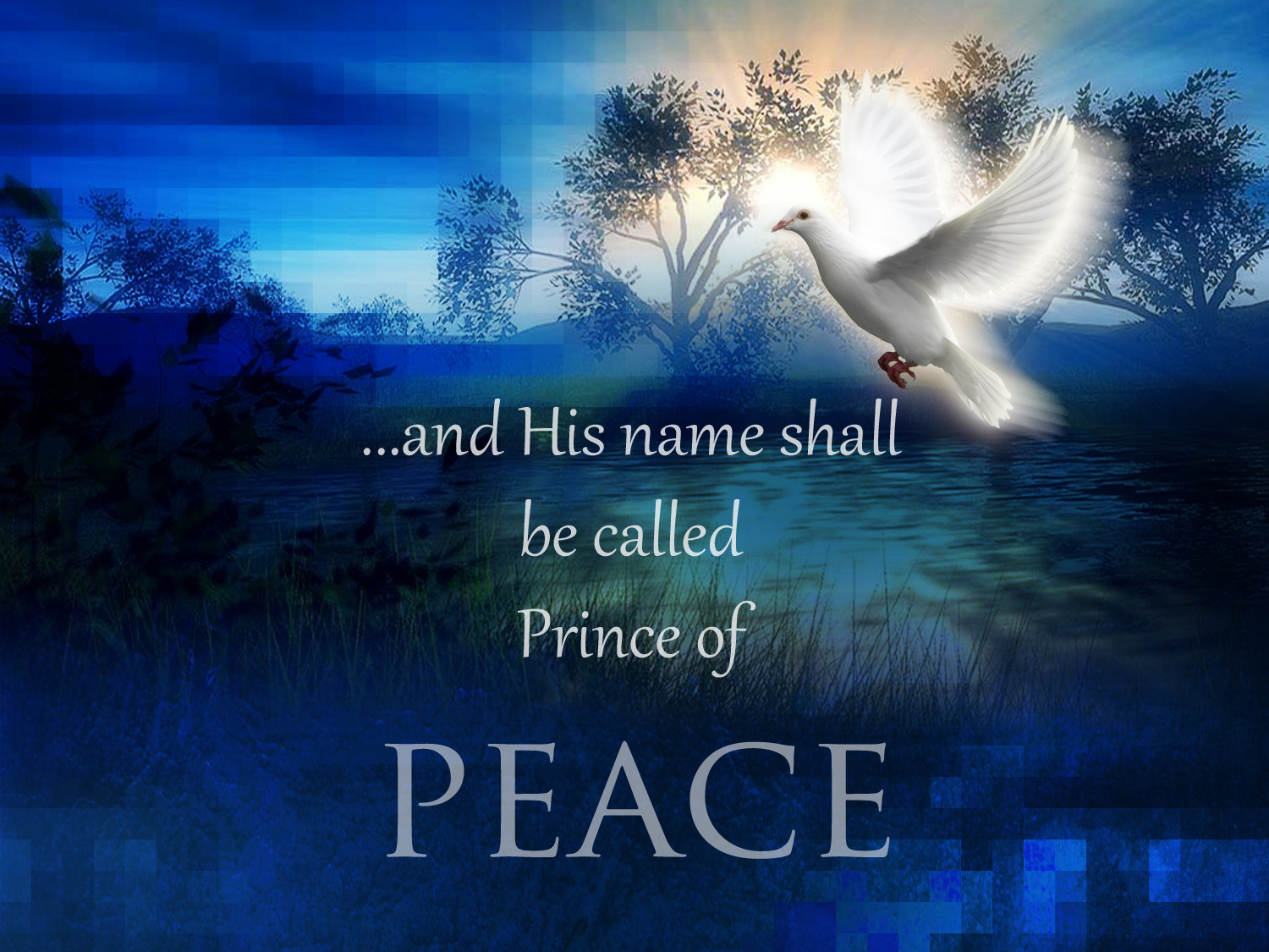 Image result for prince of peace photo
